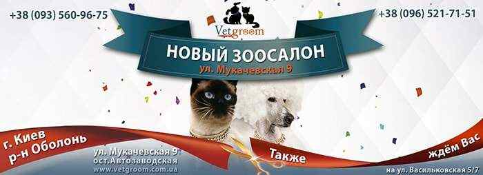 Открытие нового салона сети зоосалонов «Vetgroom»